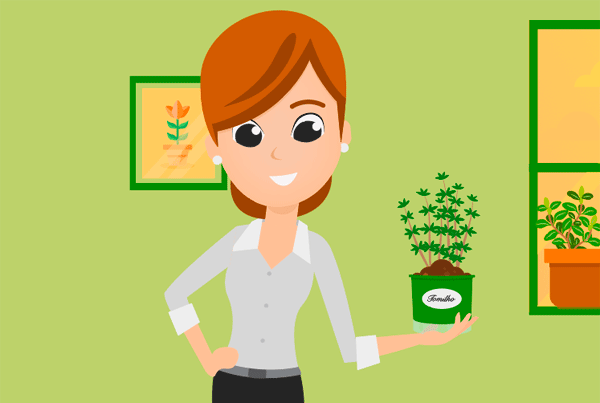 Vídeo Animação 2D – Plantei Garden Center